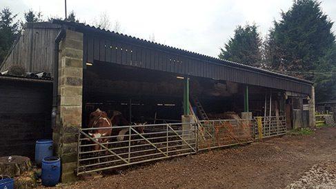 Barn Conversion - Horsham